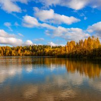 Осень в Подмосковье :: Алексей Федотов