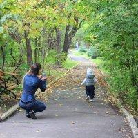 Осенние прогулки. :: Елена Тимонова