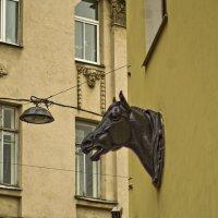 Дом с конями. :: Senior Веселков Петр