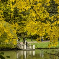 Осень :: Валерий Ходунов