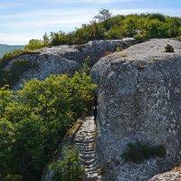 На плато Эски-Кермена :: Андрей Козлов
