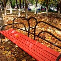 Осень.... :: Лара ***
