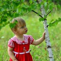 Детская березка. :: Aleksandr Ivanov67 Иванов