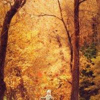 Медовая осень :: Оксана Шаталина