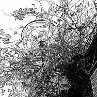 Осенний сон :: Marina Bernackaya Бернацкая