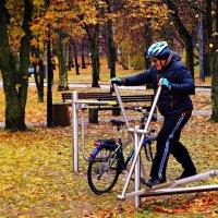 Осенний бегун. :: donat