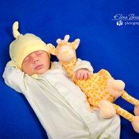 Новорожденный малыш с жирафом :: Елена Бессонова