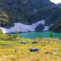 Горный Алтай, озеро у подножия горы Красной :: Юрий Белоусов