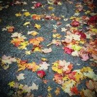 Осенний пейзаж :: Виктория Нефедова
