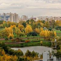 Золотая осень :: Наталия Горюнова