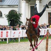 джигит и конь :: Олег Лукьянов