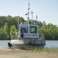 Тяну я кораблик по быстрой реке.... :: Татьяна Степанова
