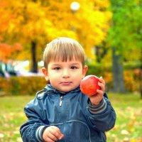 Яркая вкусная осень :: Albina
