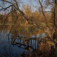 Московская осень. :: Владимир. Ермаков