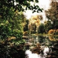 на берегу старинного пруда :: Анна -