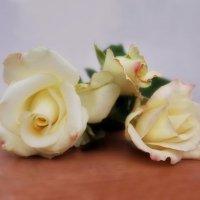 Всю жизнь цветы не оставляют нас.. :: Людмила Богданова (Скачко)