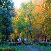 яркая осень :: Горкун Ольга Николаевна