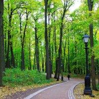 В парке. :: Иван
