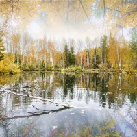 Осень.... :: Сергей J