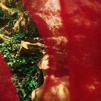 Красивая девушка в лесу :: Виктория Балашова