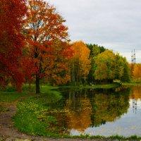 тихая осень :: navalon M