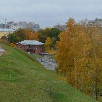 Вид со стороны вала в рязанском кремле (панорама) :: Александр Буянов
