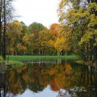 Осенний пейзаж :: Наталия Короткова
