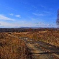 деревенская дорога :: Владимир Куликов