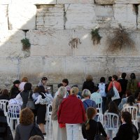 У Стены плача:  Женская половина :: Aleks Ben Israel