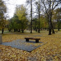 Осенний парк... :: Павел WoodHobby