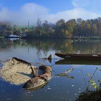К берегу прибило, почти крокодила... :: Вальтер Дюк