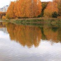 Осенних красок отраженья :: Татьяна Ломтева