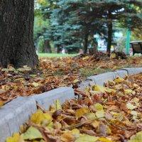...и снова осень. :: ЕВГЕНИЯ