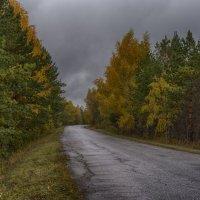 Осень :: Анжелика Сазонова