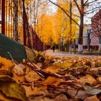 Город :: NIL_3300