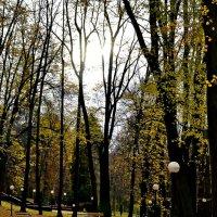 вот  и осень... :: Михаил Столяров