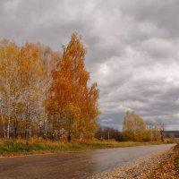 Осень :: Татьяна Шаклеина