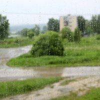 дождь :: андрей шилов