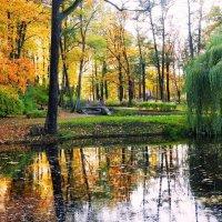 Осень в парке :: Александр Михайлов