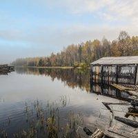 Гимольское озеро :: Наталья Левина
