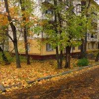 Осень не первоначальная :: Андрей Лукьянов