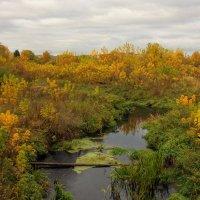 Разбросала осень краски, возле маленькой реки... :: марк