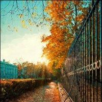 Осенний свет :: Цветков Виктор Васильевич