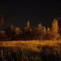 ночь :: sergeu46 Рагулин