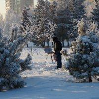 Зимнее вдохновение :: vladimir