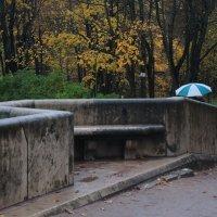 осенняя прогулка с зонтом :: sv.kaschuk