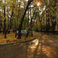 Осень не первоначальная в городе :: Андрей Лукьянов