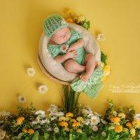 Новорожденная съемка :: Марина Белогрудова