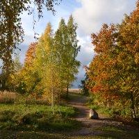 Осень в октябре :: Ирина Никифорова