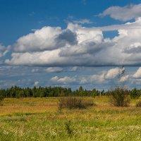 А по небу степенно плывут облака :: Игорь Сикорский